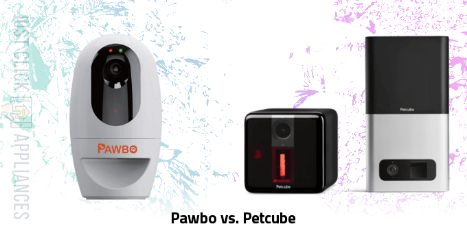 Pawbo vs Petcube