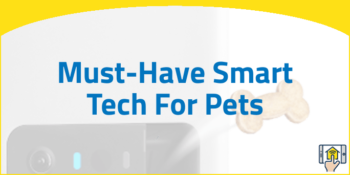 Must-Have Smart Tech For Pets
