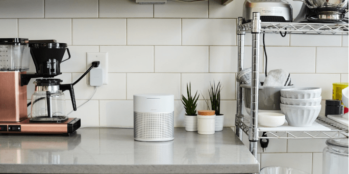 Bose Home Speaker 300-extra-3